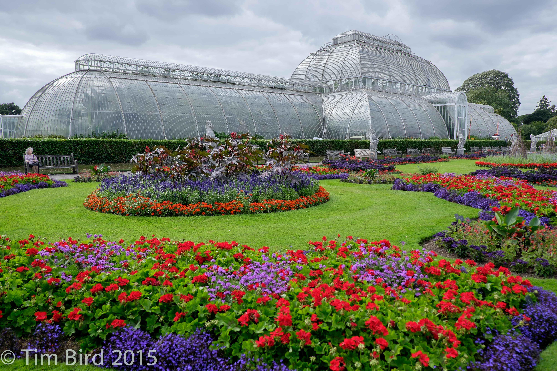 bgtw-Kew-2194